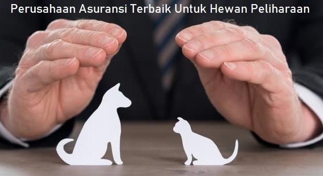 Perusahaan Asuransi Terbaik Untuk Hewan Peliharaan